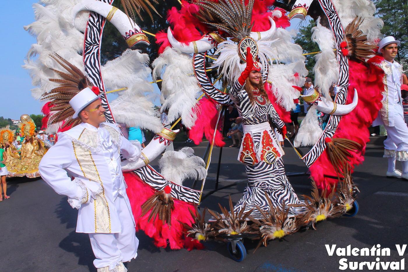 organiser un carnaval dans un village du var fiesta parade spectacle de no l pour entreprise. Black Bedroom Furniture Sets. Home Design Ideas